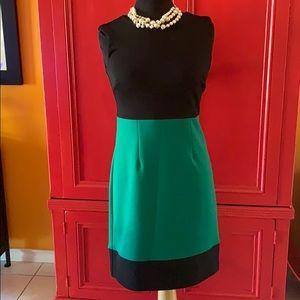 LIKE NEW! BEAUTIFUL, fitted Carole Little dress